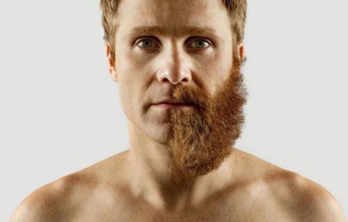 Barbe déco3