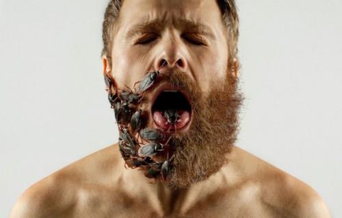 Barbe déco6