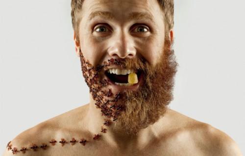 Barbe déco8