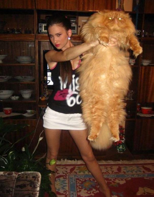 Big cat2