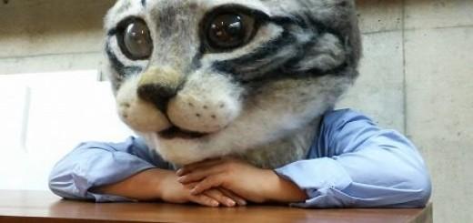Un masque de chat pour se balader en ville 6