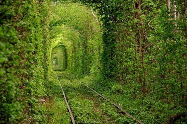 Tunnel de l'amour. Ukraine