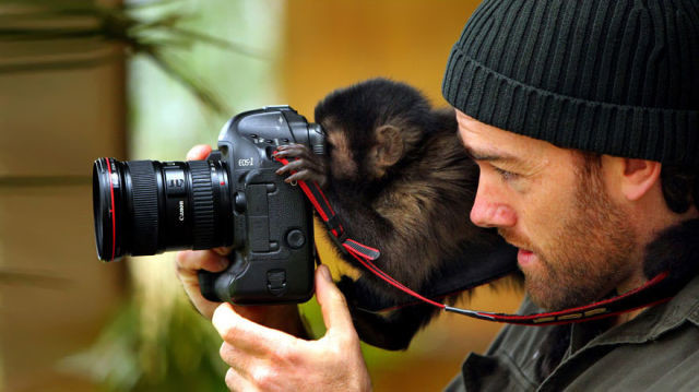 animal-photographe-9