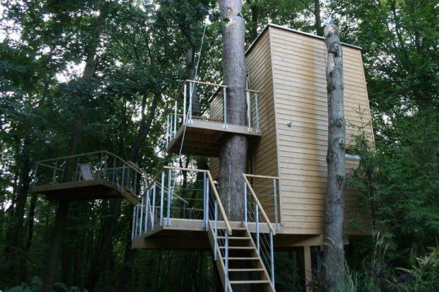 architecture-autour-des-arbres-11