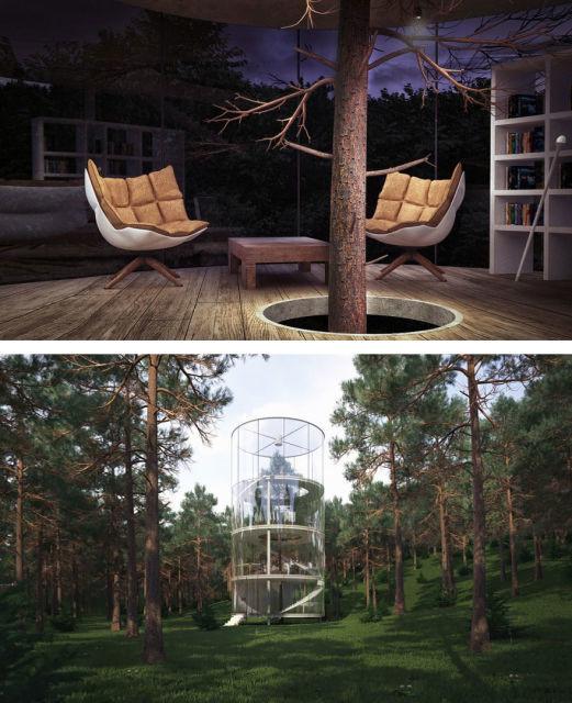 architecture-autour-des-arbres-3