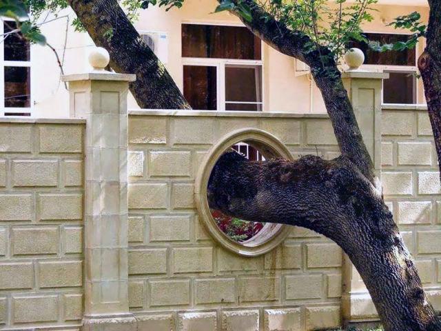 architecture-autour-des-arbres-5