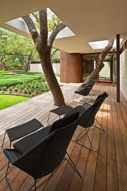 architecture-autour-des-arbres-8