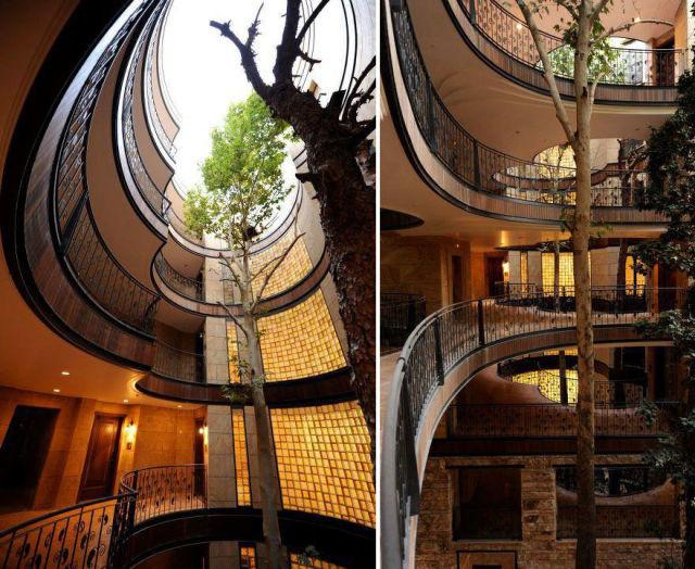 architecture-autour-des-arbres-9