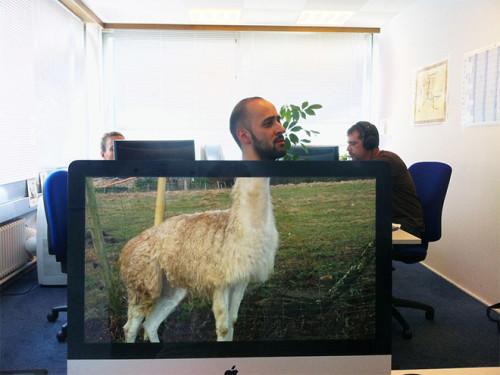 bureau-ordinateur-chakipet8