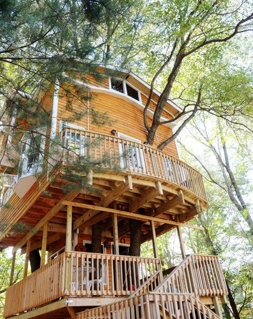 cabane-dans-les-arbres-1