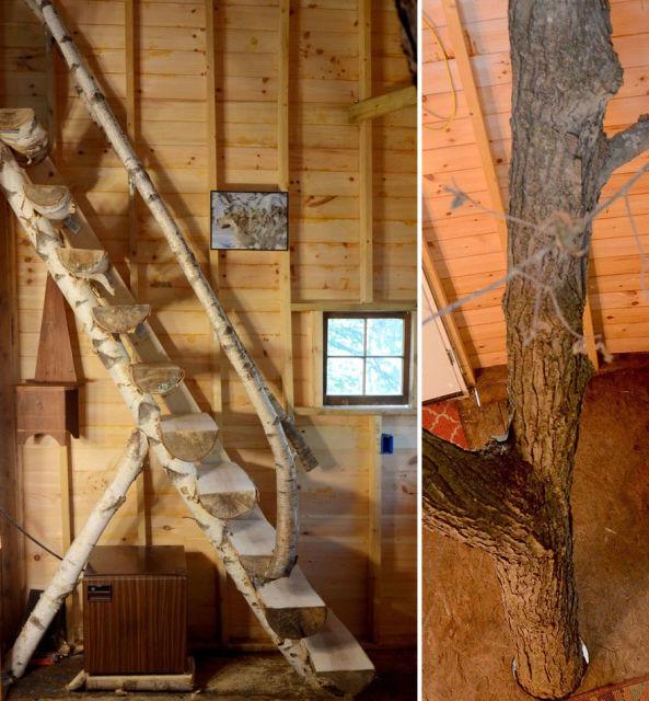 cabane-dans-les-arbres-2