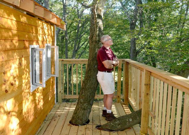 cabane-dans-les-arbres-5