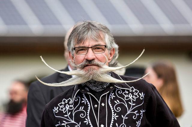 championnat-monde-barbe-moustache-2015-5