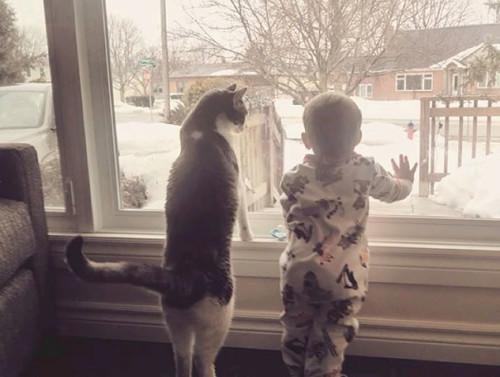 chats enfants 1
