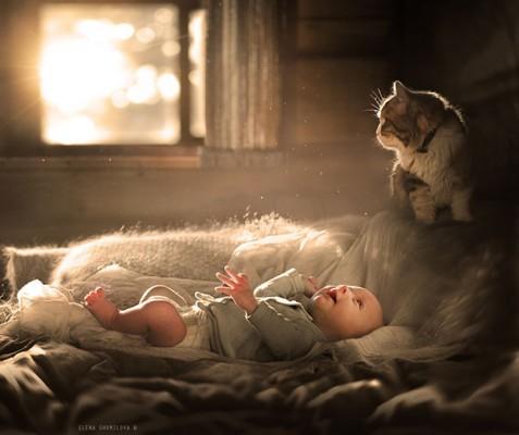chats enfants 10