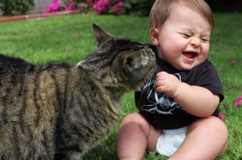 chats enfants 14