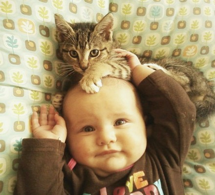 chats enfants 15