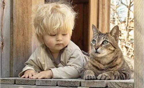 chats enfants 18