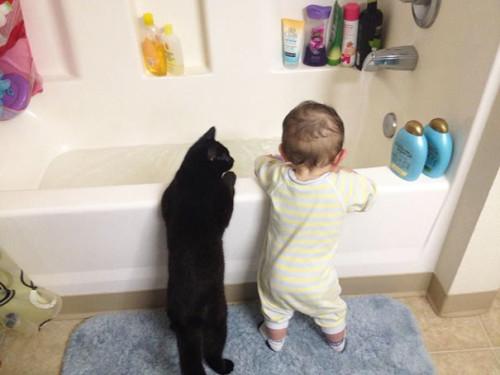 chats enfants 2
