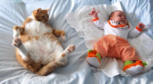 chats enfants 20
