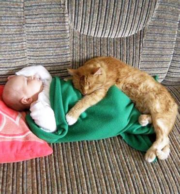 chats enfants 4