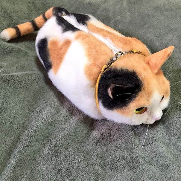 chats-sac-3
