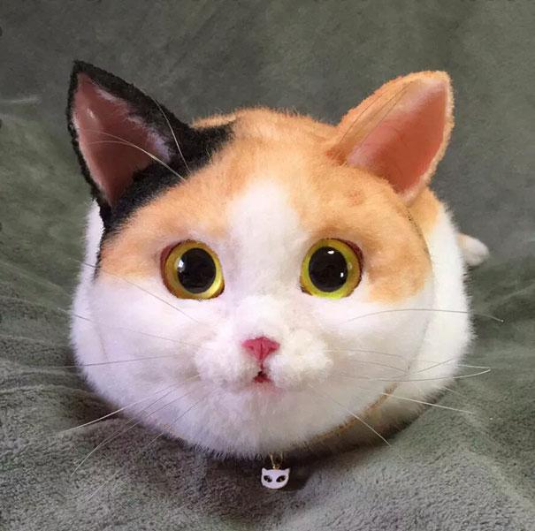 chats-sac-6