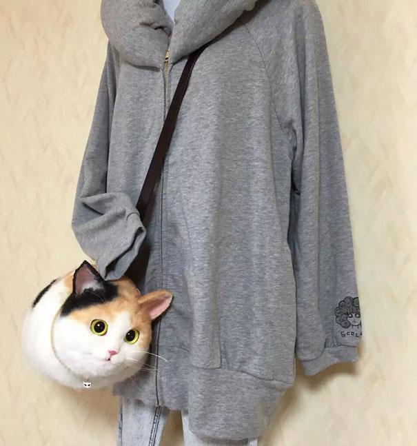 chats-sac-8