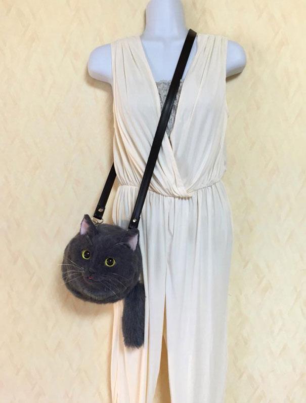 chats-sac-9