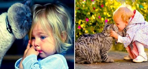 20 photos qui prouvent que les enfants ont besoin d'un chat 21