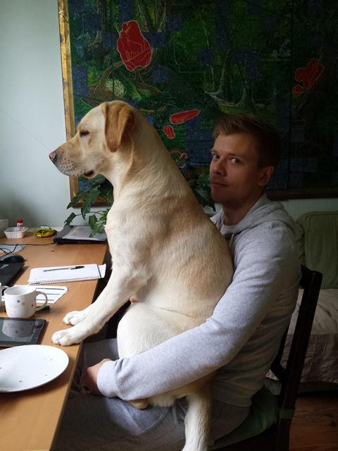 chiens-envahisseurs-espace-personnel-4