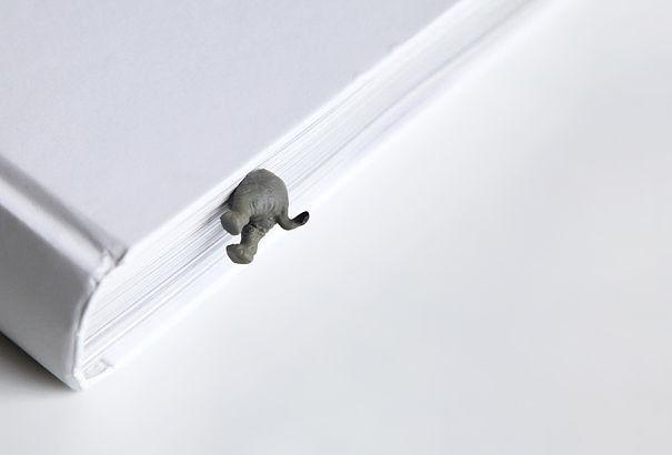 chose-amoureux-elephant-6
