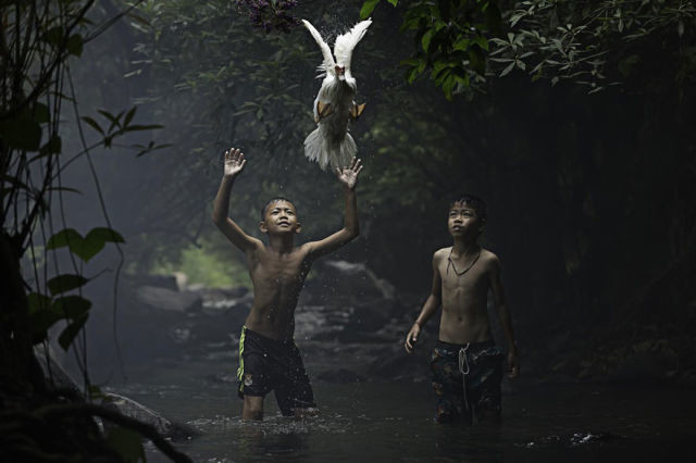 concours-photo-national-geographic-2015-10