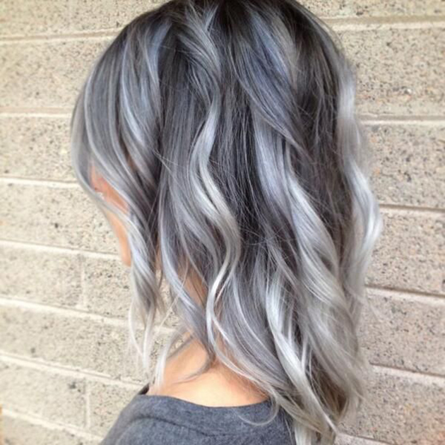 coupe Gris3