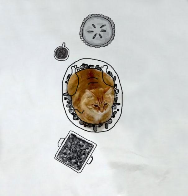 dessin-chat-amusant-1