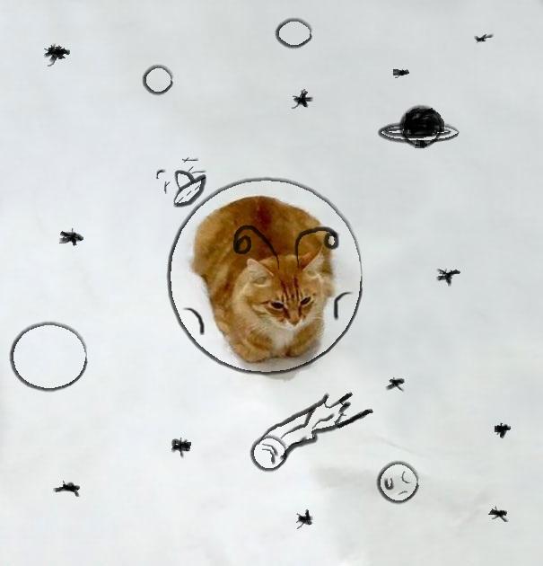 dessin-chat-amusant-10