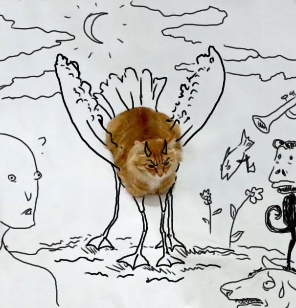 dessin-chat-amusant-12