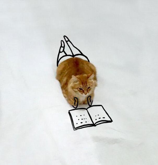 dessin-chat-amusant-13
