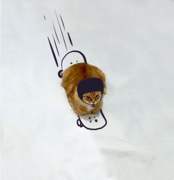 dessin-chat-amusant-14