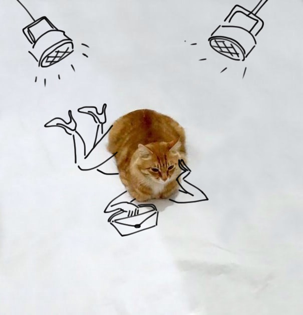 dessin-chat-amusant-5