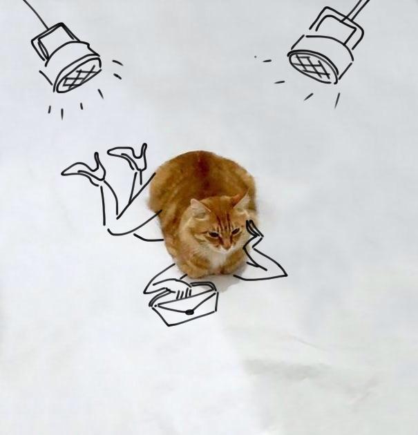 dessin-chat-amusant-5