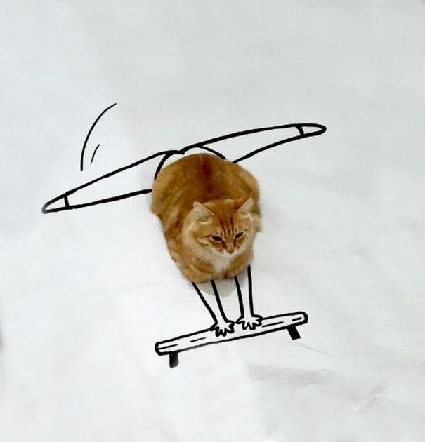 dessin-chat-amusant-7