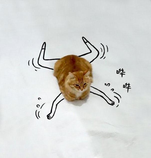 dessin-chat-amusant-8