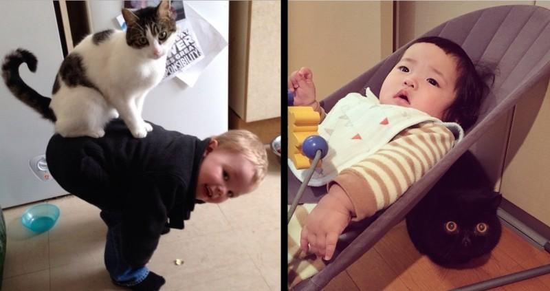 INSOLITE : chats et enfants, une tendre complicité. 28