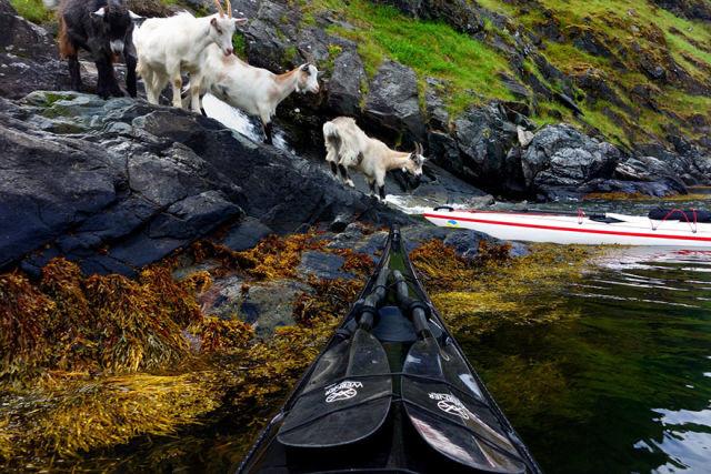 fjord-norvege-kayak-22