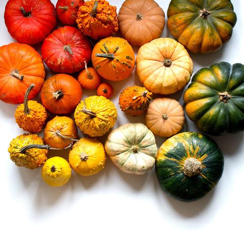 Des fruits et légumes hauts en couleurs 1