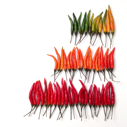 Des fruits et légumes hauts en couleurs 12
