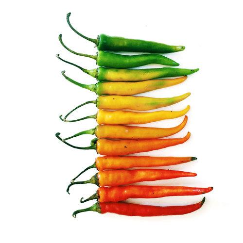 Des fruits et légumes hauts en couleurs 2