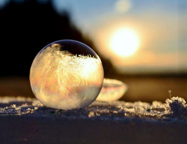 Ice Art : La nature nous dévoile ses perles 6