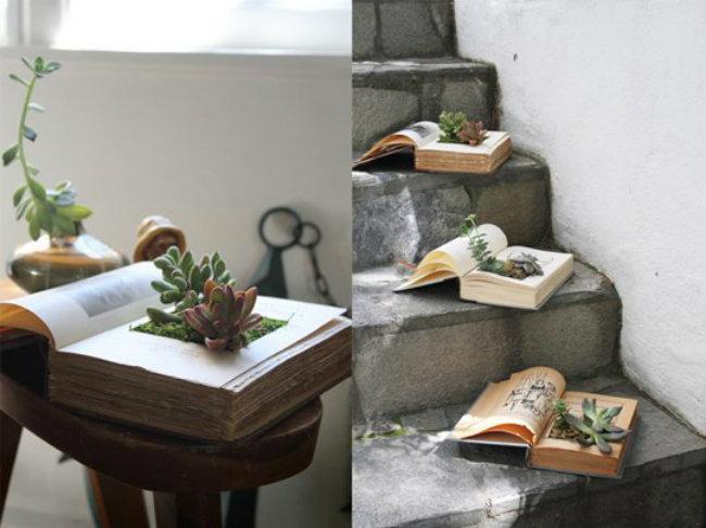 jardin miniature11